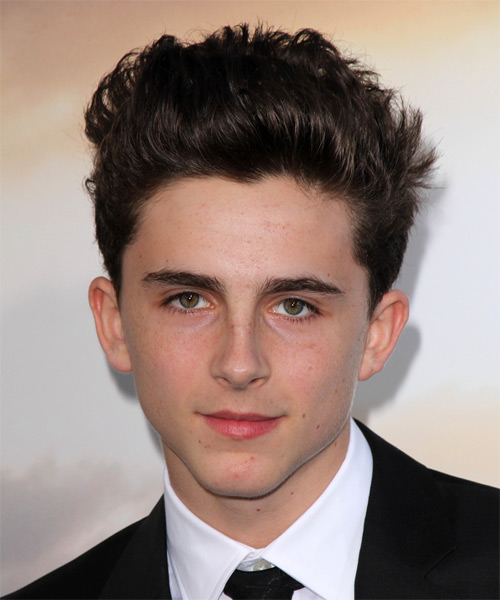 Timothee Chalamet Short Straight