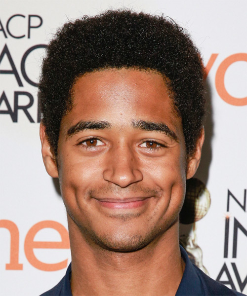 Alfred Enoch Short Curly Casual Afro Hairstyle - Black Hair Color