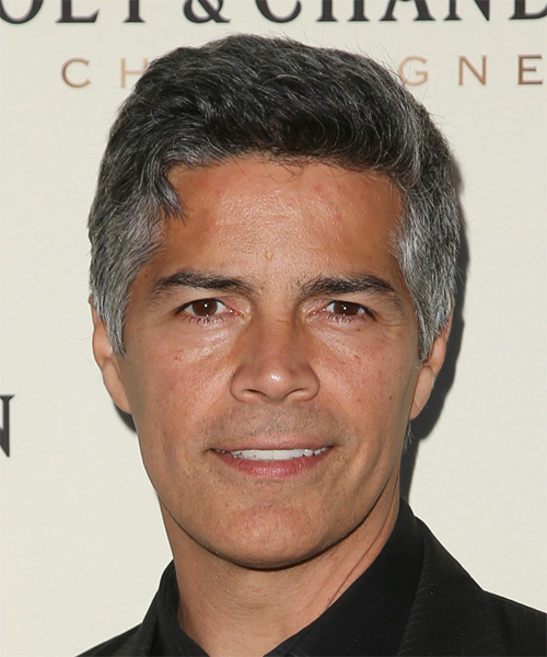 Esai Morales Short Straight Casual Hairstyle - Medium Grey Hair Color