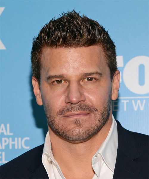 David Boreanaz Short Straight