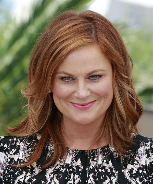 Amy Poehler Long Straight Casual Hairstyle - Medium Red Hair Color