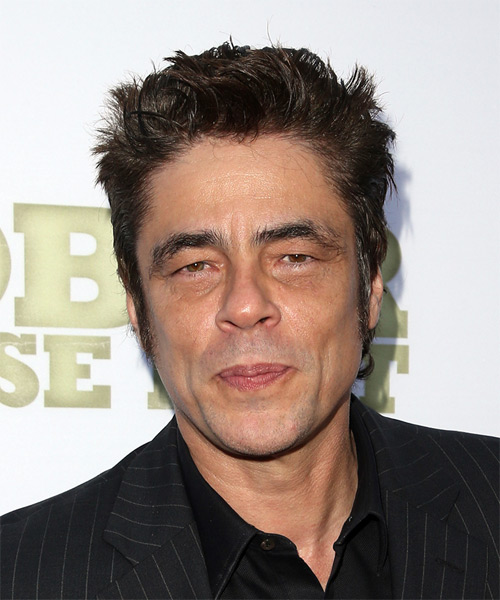 Benicio del Toro Short Straight Casual Hairstyle - Dark Brunette Hair Color