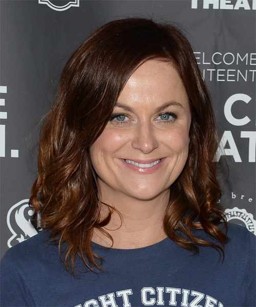 Amy Poehler Medium Wavy Casual  - Medium Brunette