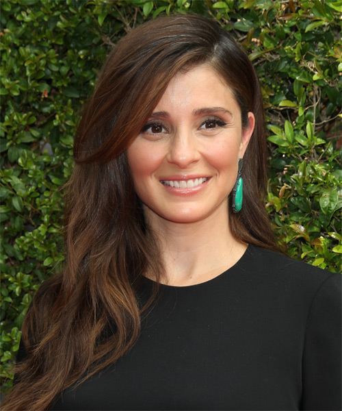 Shiri Appleby Long Straight Casual  - Dark Brunette