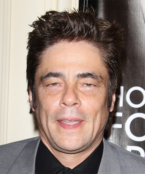 Benicio Del Toro Short Straight Casual Hairstyle - Dark Brunette (Chocolate) Hair Color
