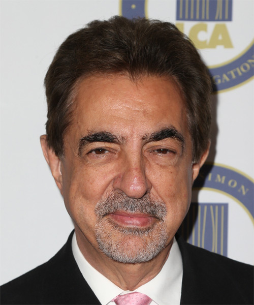 Joe Mantegna Short Straight Casual  - Medium Brunette