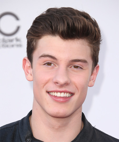 Shawn Mendes Short Straight Formal Hairstyle - Medium Brunette Hair Color