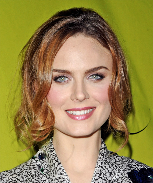 Emily Deschanel Casual Curly Half Up Hairstyle