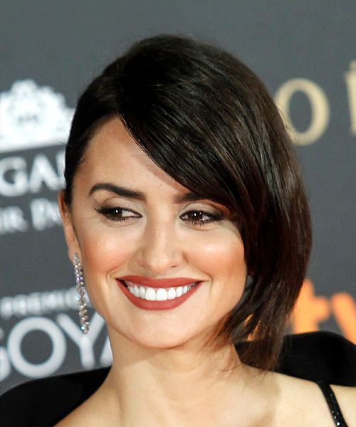 Penelope Cruz Medium Straight Hairstyle - Dark Brunette