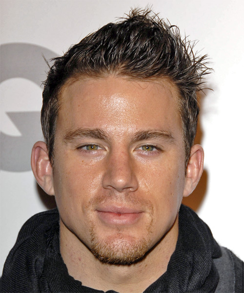 Channing Tatum Short Straight Hairstyle (Chestnut)