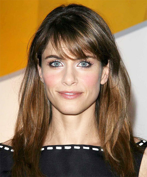 Amanda Peet Long Straight soft layered Hairstyle