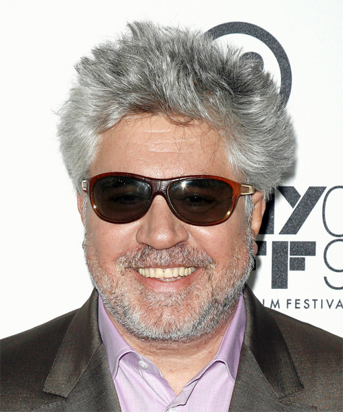 Pedro Almodovar Short Straight Hairstyle
