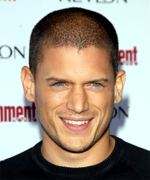 Wentworth Miller Short Straight Hairstyle