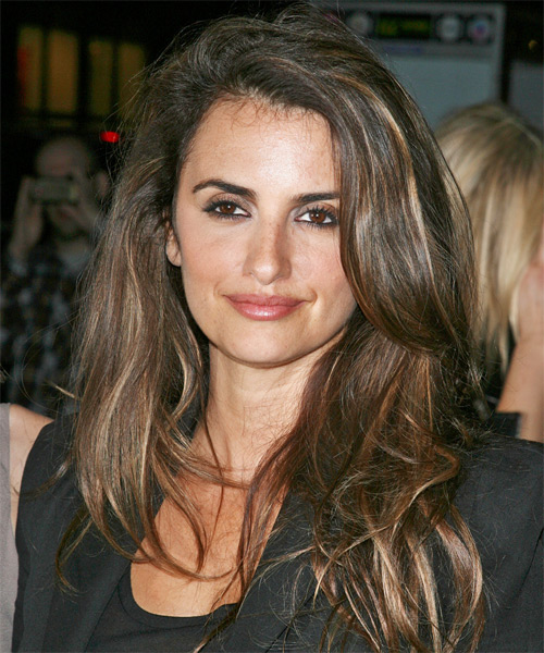 Penelope Cruz Long Straight Casual Hairstyle - Dark Brunette Hair Color
