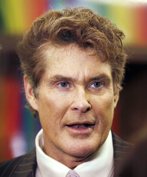 David Hasselhoff Short Wavy Formal Hairstyle