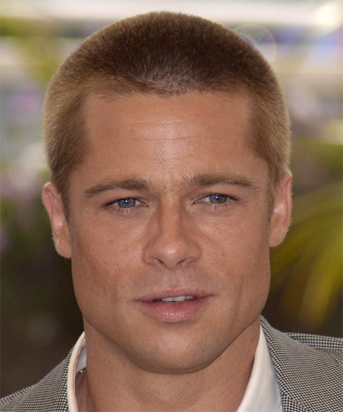 Brad Pitt Short Straight Hairstyle - Medium Blonde