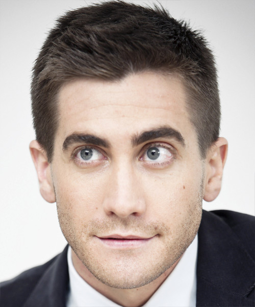 Jake Gyllenhaal Short Straight Casual Hairstyle - Medium Brunette (Ash) Hair Color