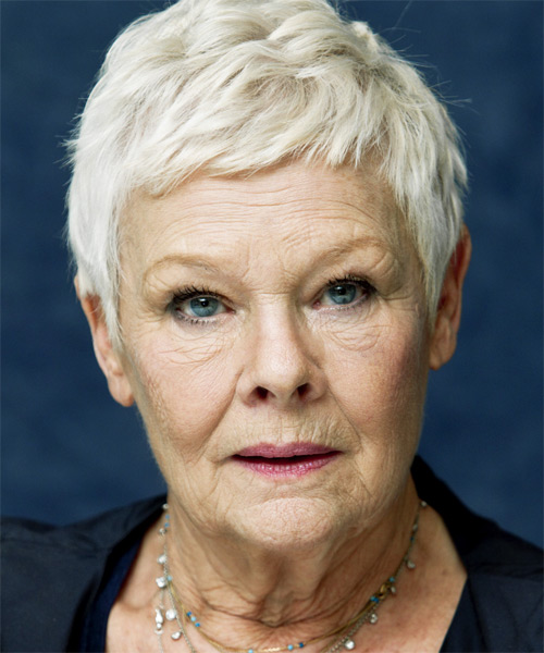Judi Dench Short Straight Hairstyle
