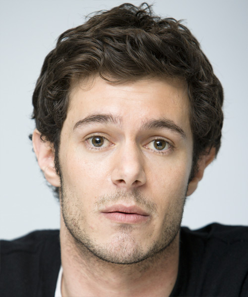 Adam Brody Short Wavy Hairstyle