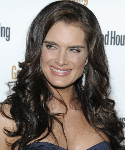Brooke Shields Long Wavy Formal Hairstyle - Medium Brunette Hair Color