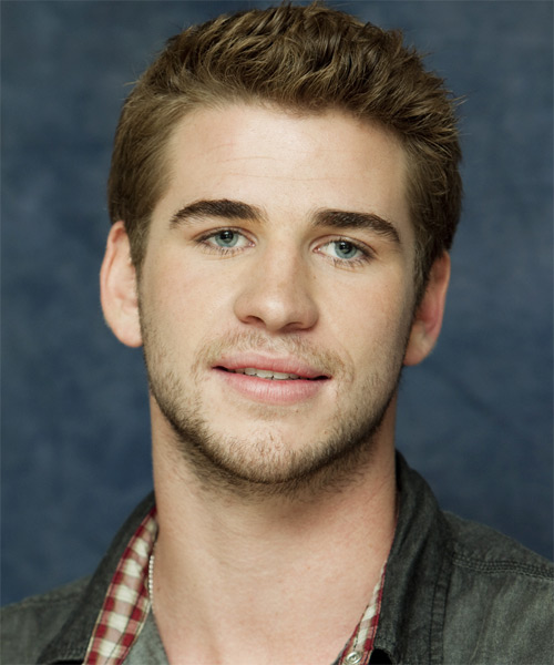 Liam Hemsworth - Casual Short Straight Hairstyle