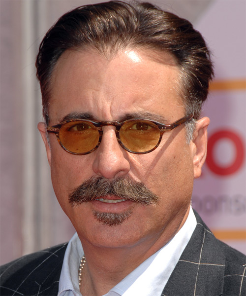 Andy Garcia - Formal Short Straight Hairstyle