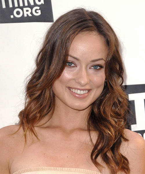 Olivia Wilde Long Wavy Casual Hairstyle