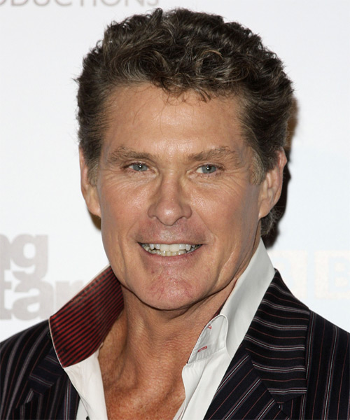 David Hasselhoff Short Wavy Hairstyle - Medium Brunette (Ash)