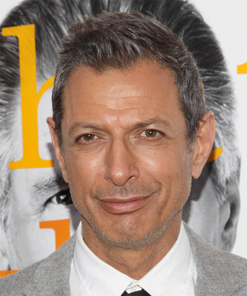 Jeff Goldblum Short Straight Hairstyle