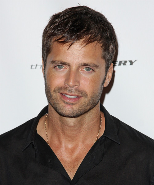 David Charvet Short Straight Hairstyle