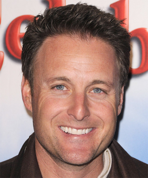 Chris Harrison - Straight  Short Straight Hairstyle