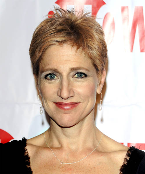Edie Falco Short Straight Hairstyle