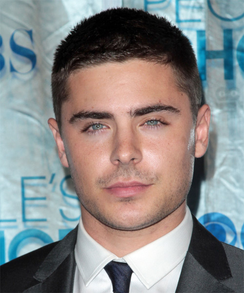 Zac Efron Short Straight Casual Hairstyle - Black