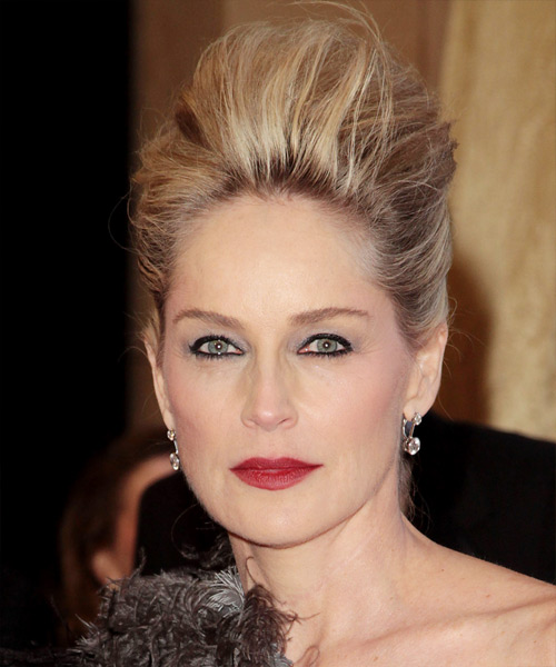 Sharon Stone Casual Straight Updo Hairstyle