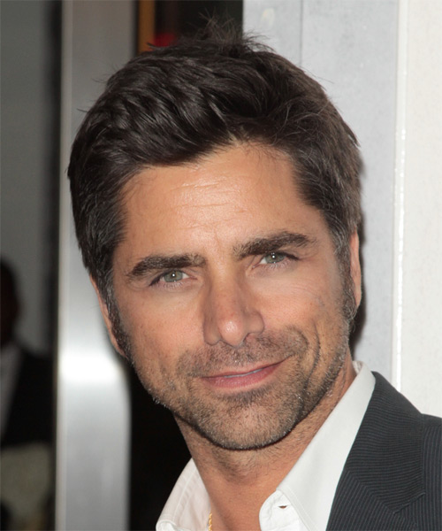 John Stamos Short Straight Hairstyle - Dark Brunette