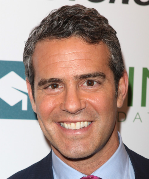 Andy Cohen Short Wavy Hairstyle - Black (Salt and Pepper)