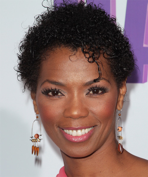 Vanessa A Williams Short Curly Casual Afro Hairstyle - Black Hair Color