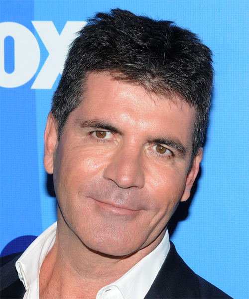 Simon Cowell Short Straight Hairstyle - Black (Salt and Pepper)