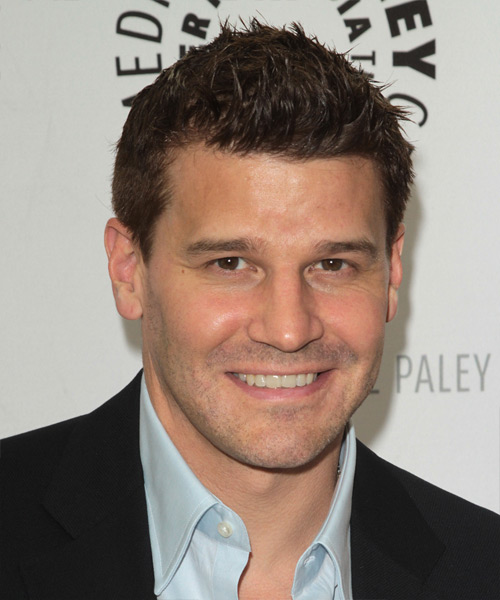 David Boreanaz Short Straight Hairstyle - Medium Brunette