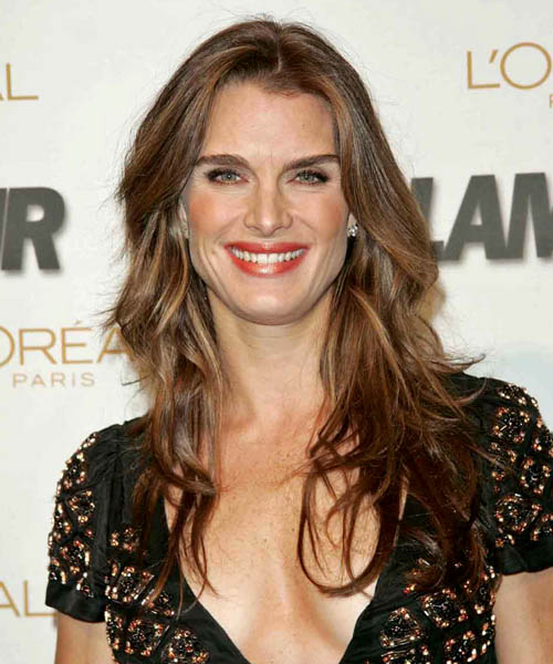 Brooke Shields Long Wavy Casual