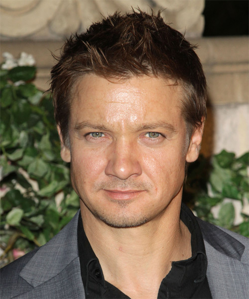 Jeremy Renner Short Straight Hairstyle - Dark Brunette