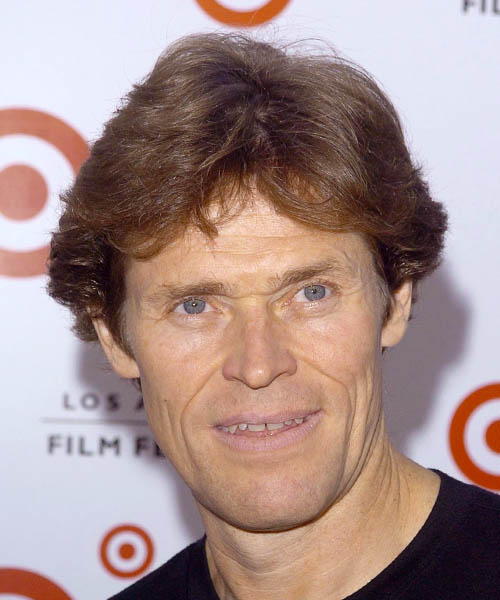 Willem Dafoe Short Straight Casual Hairstyle
