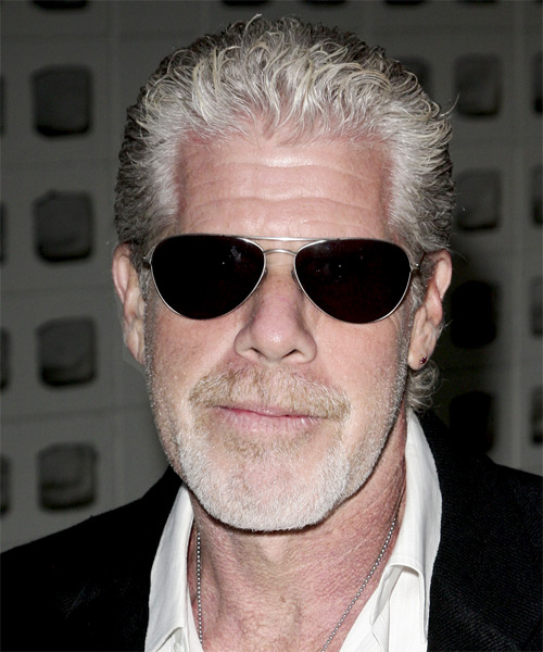 Ron Perlman Short Curly Casual Hairstyle - Medium Grey Hair Color