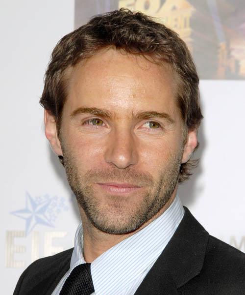 Alessandro Nivola Short Straight Hairstyle