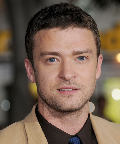 Justin Timberlake Short Straight Hairstyle - Medium Brunette (Ash)