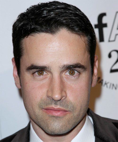 Jesse Bradford Short Straight Hairstyle - Black