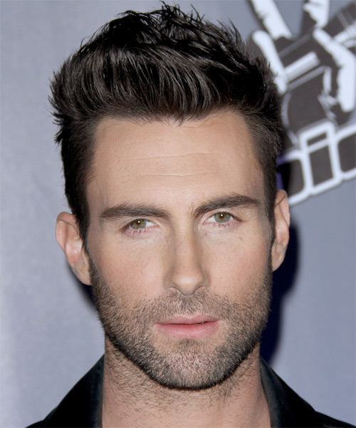 Adam Levine Short Straight Hairstyle (Mocha)