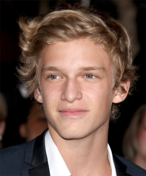 Cody Simpson Medium Wavy Hairstyle - Dark Blonde