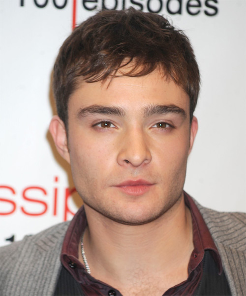 Ed Westwick Short Straight Casual Hairstyle with Layered Bangs - Medium Brunette Hair Color