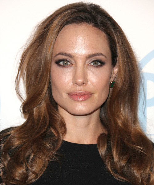 Angelina Jolie Long Wavy Casual Hairstyle - Medium Brunette (Chocolate) Hair Color